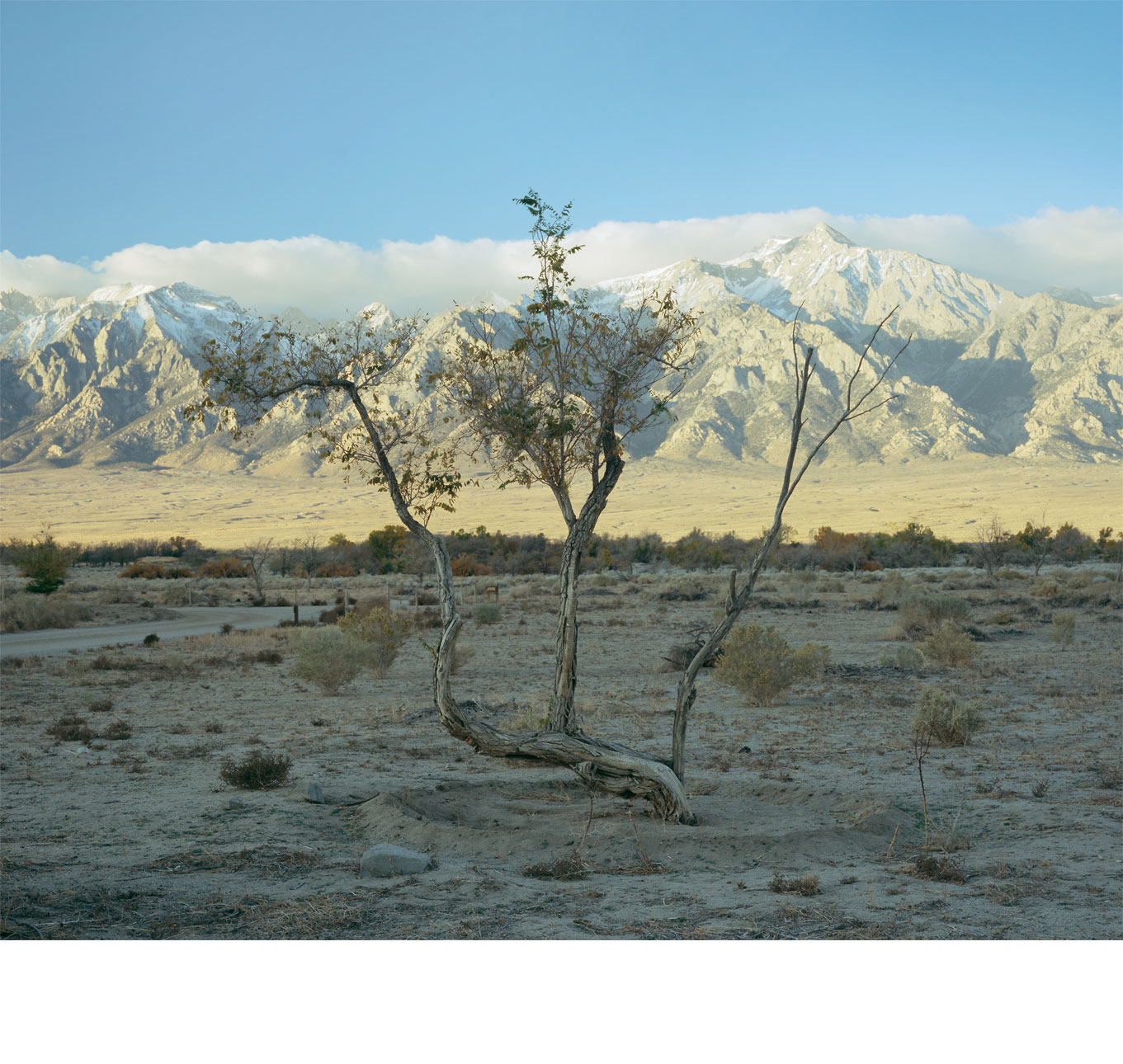 Manzanar_mountain-1.0a.jpg